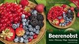 Beerenobst – Sorten, Pflanzung, Pflege, Verarbeitung