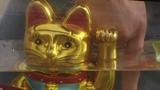 Der wundersame Katzenfisch – Comedydrama mit Lisa Owen, Ximena Ayala, Sonia Franco