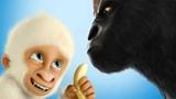Flöckchen – Die großen Abenteuer des kleinen weißen Gorillas