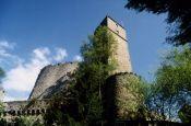 Burg Guttenberg Neckarmühlbach Burg_Schloss Deutschland Ausflugsziele Freizeit Urlaub Reisen