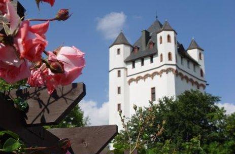Kurfürstliche Burg Eltville Eltville am Rhein Burg_Schloss Deutschland Ausflugsziele Freizeit Urlaub Reisen