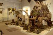 Museum im Ritterhaus Offenburg Museum Deutschland Ausflugsziele Freizeit Urlaub Reisen