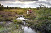 Bourtanger Moor-Bargerveen Meppen Naturpark_Geopark Deutschland Ausflugsziele Freizeit Urlaub Reisen