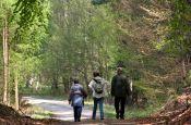 Dübener Heide Bad Düben Naturpark_Geopark Deutschland Ausflugsziele Freizeit Urlaub Reisen