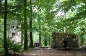 Hessischer Spessart Gelnhausen Naturpark_Geopark Deutschland Ausflugsziele Freizeit Urlaub Reisen