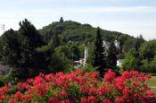 Hochtaunus Bad Homburg Naturpark_Geopark Deutschland Ausflugsziele Freizeit Urlaub Reisen