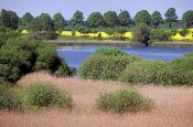 Lauenburgische Seen Ratzeburg Naturpark_Geopark Deutschland Ausflugsziele Freizeit Urlaub Reisen