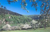 Neckartal-Odenwald Eberbach Naturpark_Geopark Deutschland Ausflugsziele Freizeit Urlaub Reisen