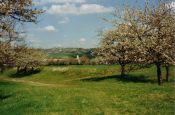 Saale-Unstrut-Triasland Naumburg Naturpark_Geopark Deutschland Ausflugsziele Freizeit Urlaub Reisen