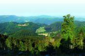 Schwarzwald Mitte/Nord Baden-Baden Naturpark_Geopark Deutschland Ausflugsziele Freizeit Urlaub Reisen