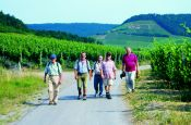Steigerwald Würzburg Naturpark_Geopark Deutschland Ausflugsziele Freizeit Urlaub Reisen