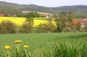 TERRA.vita - Naturpark Nördlicher Teutoburger Wald, Wiehengebirge Osnabrück Naturpark_Geopark Deutschland Ausflugsziele Freizeit Urlaub Reisen