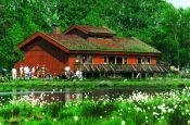Wildeshauser Geest Wildeshausen Naturpark_Geopark Deutschland Ausflugsziele Freizeit Urlaub Reisen