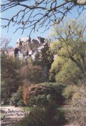 Alter Botanischer Garten, Marburg - © Konstanze Huckriede