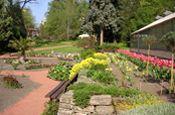 Botanischer Erlebnisgarten Altenburg Park Deutschland Ausflugsziele Freizeit Urlaub Reisen
