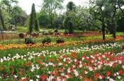 Britzer Garten Berlin Park Deutschland Ausflugsziele Freizeit Urlaub Reisen