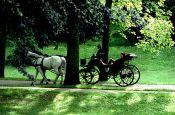 Lichtentaler Allee Baden-Baden Park Deutschland Ausflugsziele Freizeit Urlaub Reisen