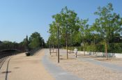 Park auf dem Moabiter Werder Berlin Park Deutschland Ausflugsziele Freizeit Urlaub Reisen