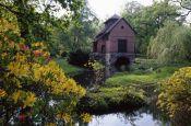 Schlosspark Oranienbaum Dessau-Oranienbaum Park Deutschland Ausflugsziele Freizeit Urlaub Reisen