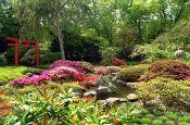 Stadtgarten Karlsruhe Park Deutschland Ausflugsziele Freizeit Urlaub Reisen