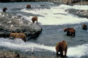 USA Alaska Juneau Reiseland Deutschland Ausflugsziele Freizeit Urlaub Reisen