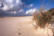 USA Mississippi Jackson Reiseland Deutschland Ausflugsziele Freizeit Urlaub Reisen