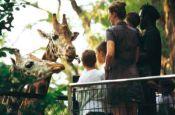 Tierpark Hagenbeck Hamburg Zoo_Tierpark Deutschland Ausflugsziele Freizeit Urlaub Reisen