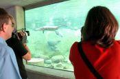 Tierpark Ueckermünde Zoo_Tierpark Deutschland Ausflugsziele Freizeit Urlaub Reisen