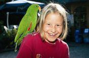 Vogelpark Detmold-Heiligenkirchen Zoo_Tierpark Deutschland Ausflugsziele Freizeit Urlaub Reisen