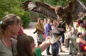 Vogelpark Marlow Zoo_Tierpark Deutschland Ausflugsziele Freizeit Urlaub Reisen