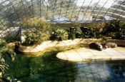 Zoologischer Garten Berlin Zoo_Tierpark Deutschland Ausflugsziele Freizeit Urlaub Reisen