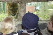 Zoologischer Garten Eberswalde Zoo_Tierpark Deutschland Ausflugsziele Freizeit Urlaub Reisen