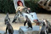 Zoologischer Garten Magdeburg Zoo_Tierpark Deutschland Ausflugsziele Freizeit Urlaub Reisen